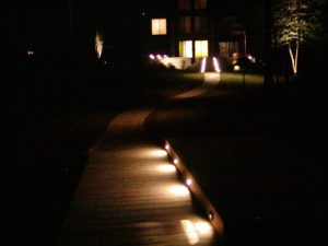 Landscape Lighting on Walkway