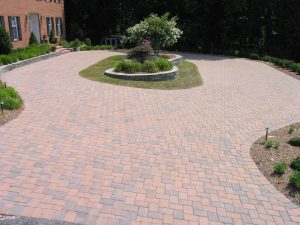 Guide to Choosing Trees for Parking Lots and Other Paved Areas