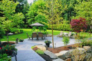 5 Common Landscape Design Issues and How to Fix Them