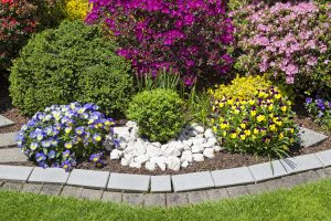 How to Create Beautiful Flower Beds