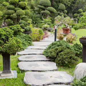 Why You Should Hire an Upscale Landscaping Service to Create Your Landscape