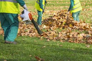 leaf removal service using a leaf blower