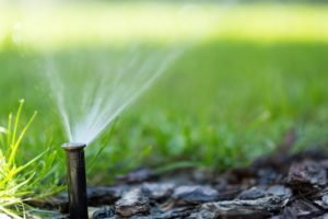 irrigation system spraying water on a front lawn