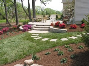 guide to landscaping plants