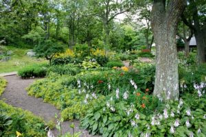 Why You Should Leave Landscape Design to Professionals